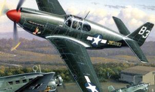 aviation art air combat puzzle