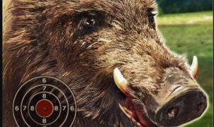 boar hunting jigsaw